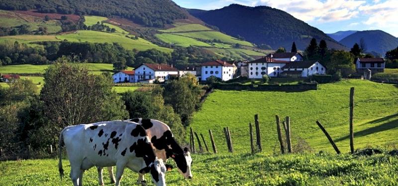 Jauregia participa en el I. Encuentro de ganadería ecológica de vacuno de  leche en Galicia. - Periódico Navarra Bio - Alimentos Ecológicos de Navarra